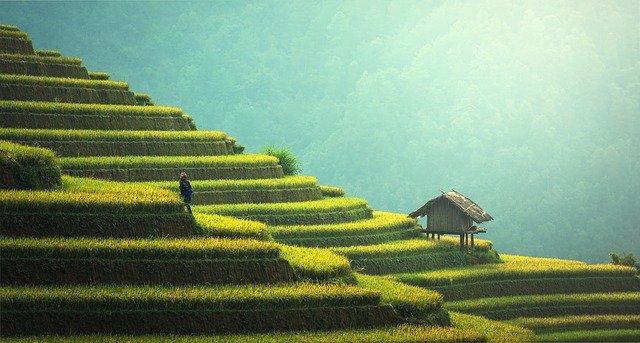 rondreis-Maleisië